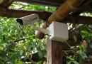 Implementación Sistemas de Video-Vigilancia – San Ignacio – Cajamarca